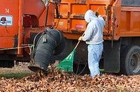 City worker removing leaves from city park