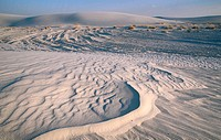 White Sands National Monument. New Mexico. USA