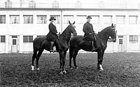 SG hist. Sport, Pferdesport, zwei Reiter auf ihren Pferden, Originalpostkarte, Foto, um 1900