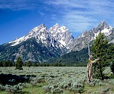 Grand Teton Range and snow. Grand Teton National Park. Wyoming, USA