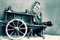 Woman standing by milk cart being pulled by dog