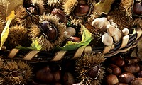Basket of sweet chestnuts
