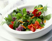 Herb salad with flowers