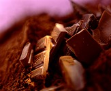 Pieces of Milka chocolate on cocoa powder