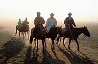 Horse racing, Naadam festival. Ulan Bator. Mongolia
