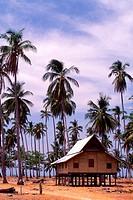 Kampung house, Malaysia