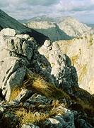 Urrieles mountains. Picos de Europa, Bulnes. Asturias, Spain