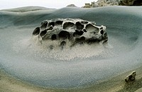 Eroded sandstone. Sonoma County coast. California