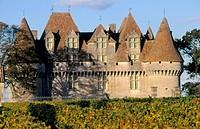 Montbazillac Castle. Dordogne. France