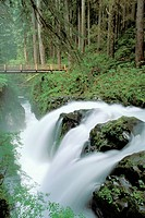 Sol Duc Falls, Olympic National Park. Washington. USA