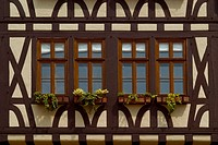 Detail of a houses at Romerplatz