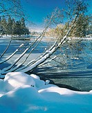 Winter on Mirror pond in Drake Park, Bend, Deschutes County, Central Oregon,USA