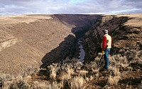 Hunting upland birds. Chukar hunting. Owyhee Canyon. Oregon. USA