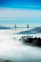 Fog Shrouding San Francisco, California