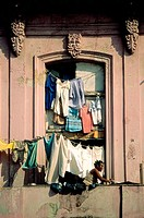 Woman hanging laundry on balcony of old building. Havana. Cuba
