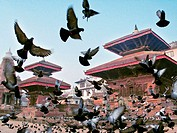 Durbar Square. Patan. Nepal