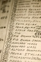 Close-up of a hand-written list of trees
