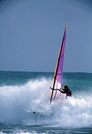 Windsurfer riding a wave into shore