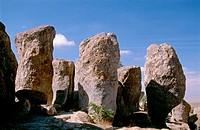 City of Rocks State Park. New Mexico. USA