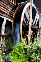 Waterwheel. Argentina