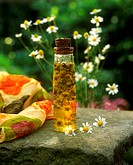 Camomile oil in bottle (classic medicinal and skin care remedy)