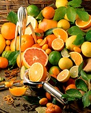 All kinds of citrus fruits with various juicers