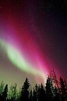 Northern Lights over Elk Island National Park, Alberta Canada