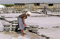 Women collecting salt. West coast. Mauritius