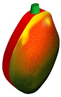 Illustration, fruit, mango