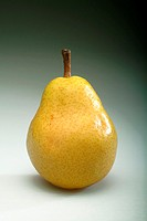 Food, fruit, pear (thumbnail)