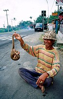 Man on roadside with pangolin. Central Bali, Indonesia