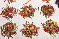Malaysia. Terenganu. Hot peppers