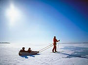 Woman skiing with two children in a sledge in direct light. Västerbotten, Sweden
