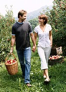 Couple Holding Hands Walking in an Orchard, With the Man Holding a Basket of Apples