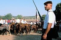Festival of ´Ardia di Sedilo´ - Ardia town - Oristano Province, Sardinia, Italy