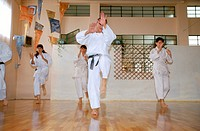 thai chi chuan, martial arts