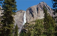 Upper Yosemite Falls (1430ft.). Yosemite National Park. California. USA