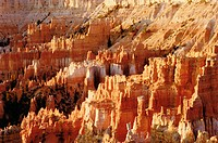 Hoodoos in Silent City. Bryce Canyon National Park. Utah. USA