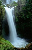 Falls Creek Falls, Cascade Mountains. Gifford Pinchot National Forest. Washington. USA