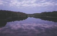 Still water and forests in Sweden