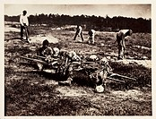 A photograph of men collecting bones on the field of the Battle of Cold Harbor in Virginia, America, by Alexander Gardener (1821-1882) from a negative...