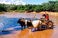 Shan State. Myanmar.