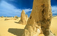Detail of heavily eroded yellow limestone pinnacle, at The Pinnacles, Nambung National Park, Western Australia