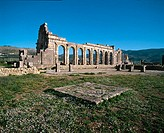 The Basilica, Roman ruins of Volubilis. Morocco