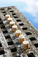 Row of corks from German organic wine