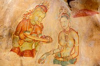 The Sigiriya damsels, rock frescoes. Sigiriya. Sri Lanka
