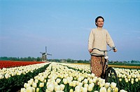 Lady with bicycle. Wind mills and tulip fields. Netherlands.