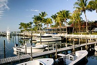 Bahamas, Abacos, Great Abaco Island, Treasure Cay: Town Marina, Brigantine Bay, Morning