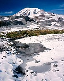 Mount Rainier. Mount Rainier National Park. Washington. USA.