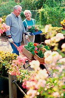 Senior couple working in a garden